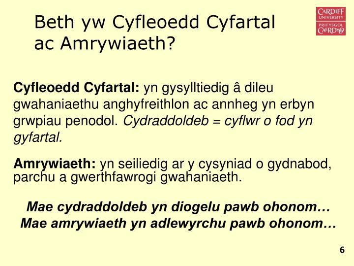 Beth yw Cyfleoedd Cyfartal ac Amrywiaeth?