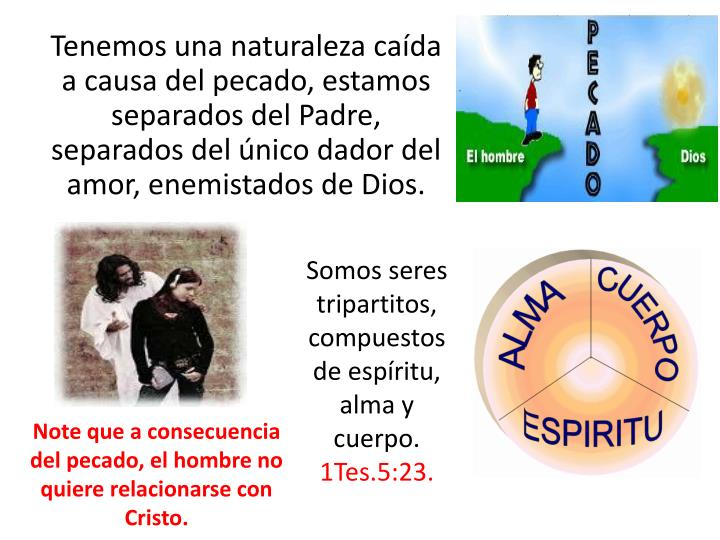 Tenemos una naturaleza cada a causa del pecado, estamos separados del