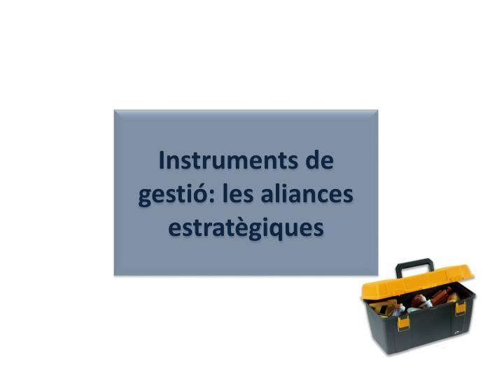 Instruments de gestió: