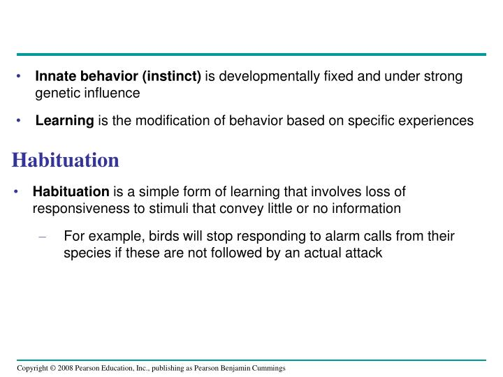 Innate behavior (instinct)