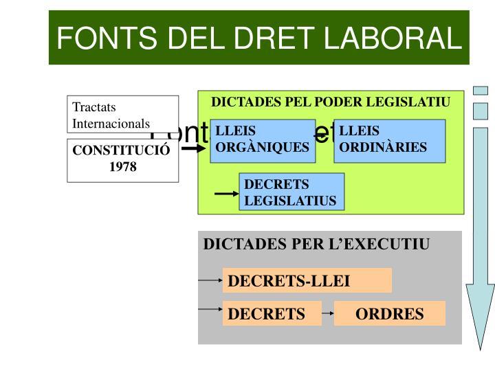 FONTS DEL DRET LABORAL