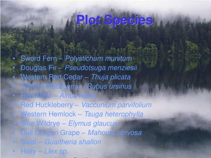 Plot Species