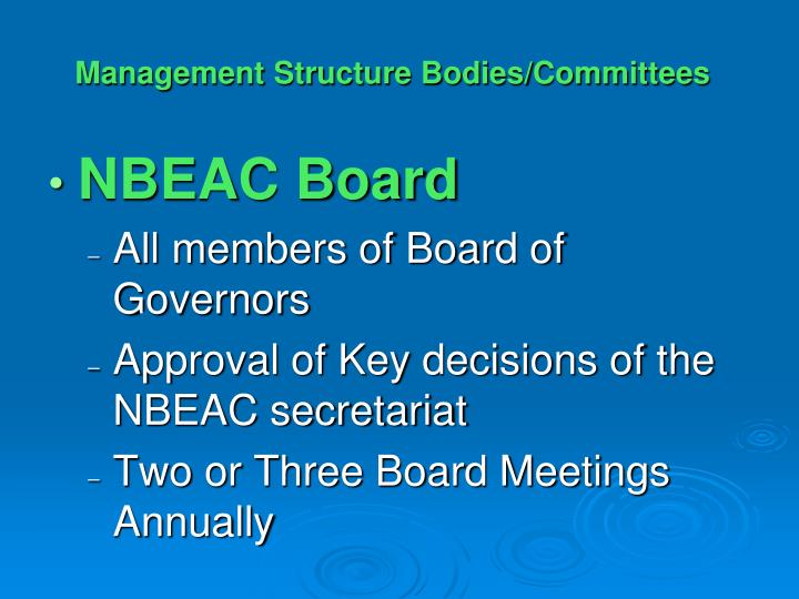 Management Structure Bodies/Committees
