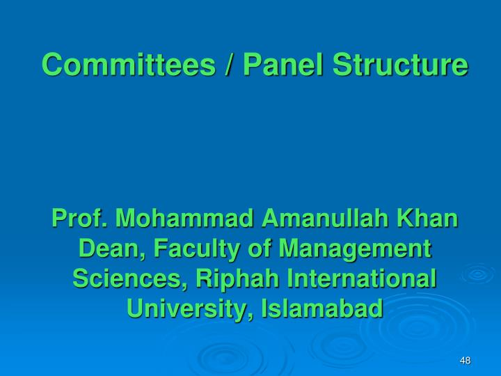 Committees / Panel Structure