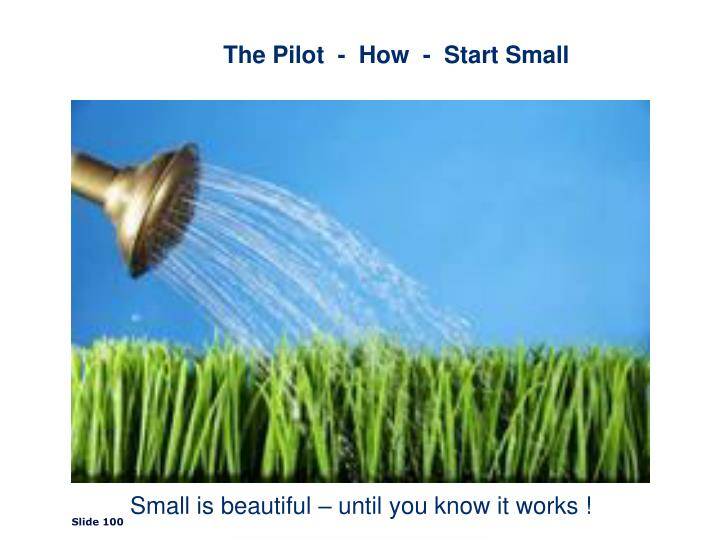 The Pilot  -  How  -  Start Small
