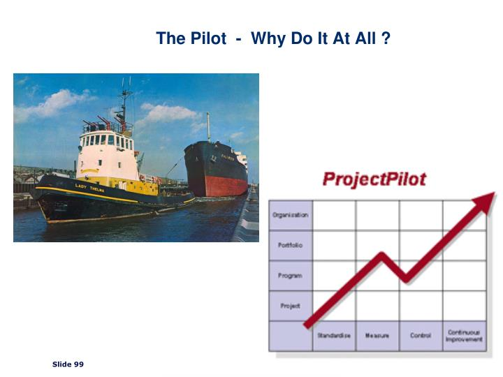 The Pilot  -  Why Do It At All ?