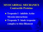 myocardial mechanics contractile proteins