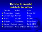 the fetal to neonatal metabolic transition