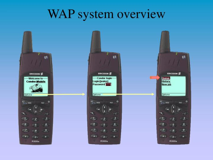 WAP system overview