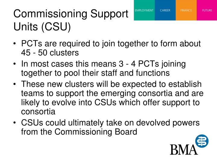 Commissioning Support