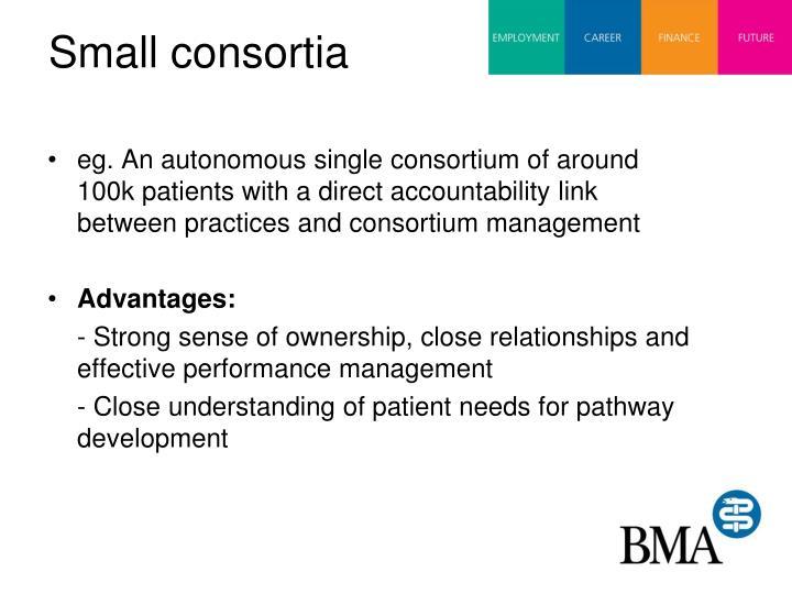Small consortia