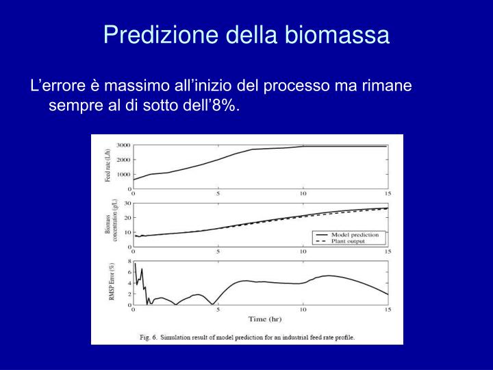 Predizione della biomassa