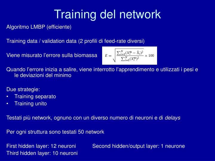 Training del network