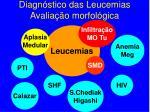 diagn stico das leucemias avalia o morfol gica