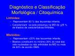 diagn stico e classifica o morfol gica citoqu mica