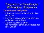 diagn stico e classifica o morfol gica citoqu mica1