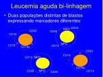 leucemia aguda bi linhagem