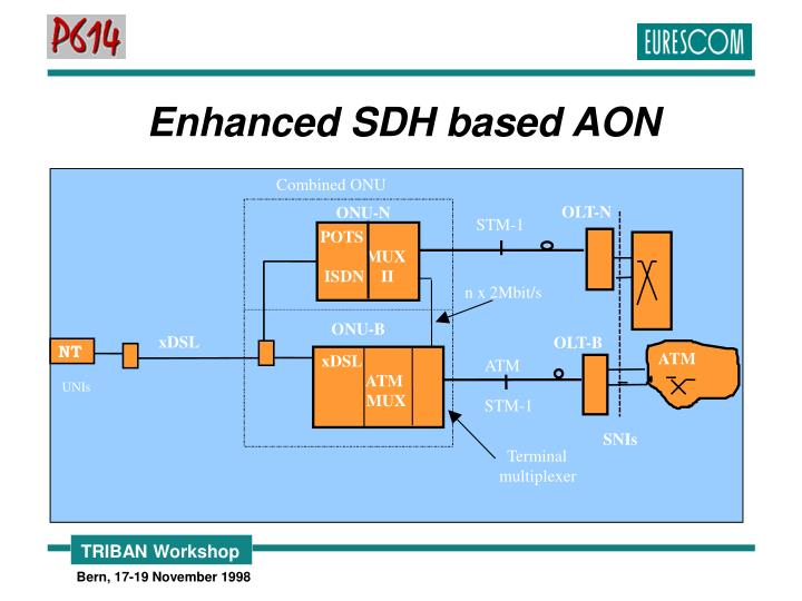Enhanced SDH based AON