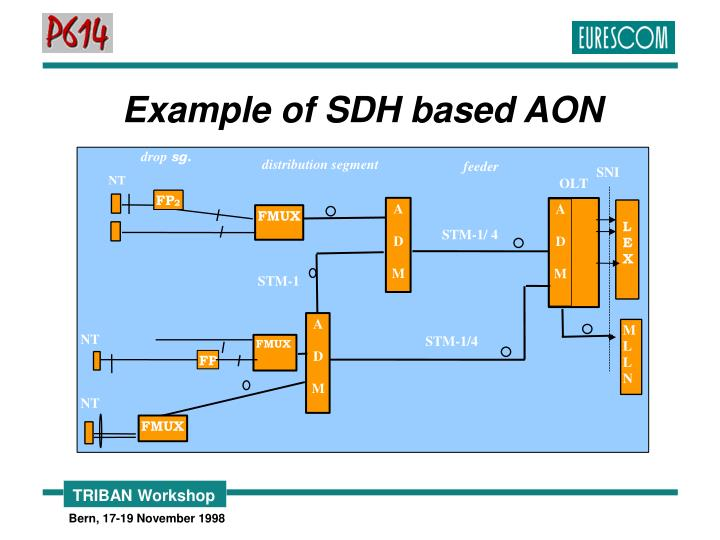 Example of SDH based AON