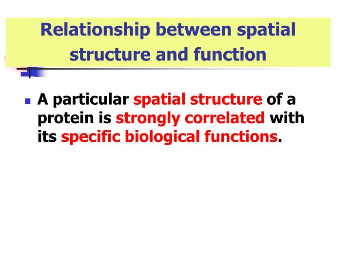 Relationship between spatial structure and function