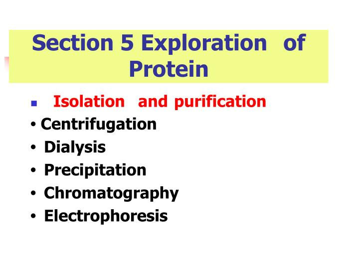 Section 5 Explorationof Protein