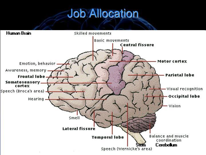 Job Allocation
