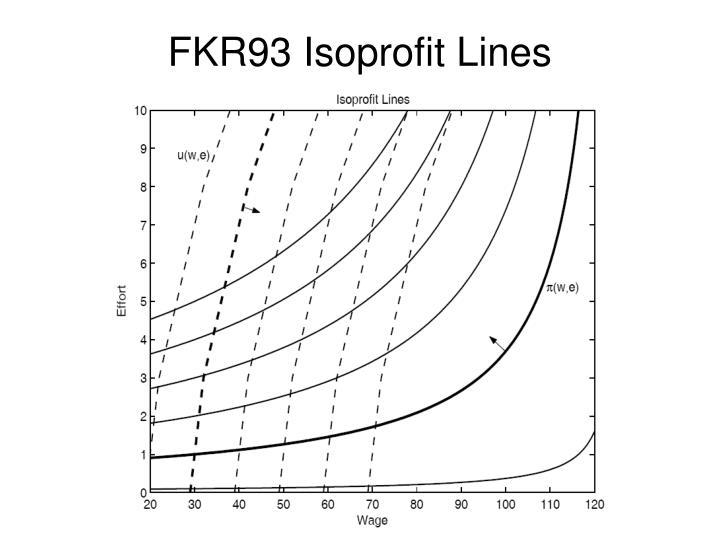 FKR93 Isoprofit Lines