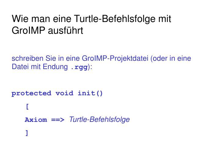 Wie man eine Turtle-Befehlsfolge mit GroIMP ausführt