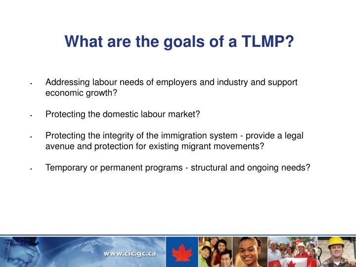 What are the goals of a TLMP?