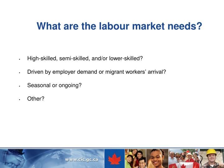 What are the labour market needs?