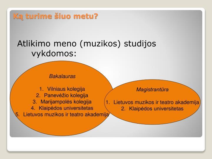 Atlikimo meno (muzikos) studijos vykdomos: