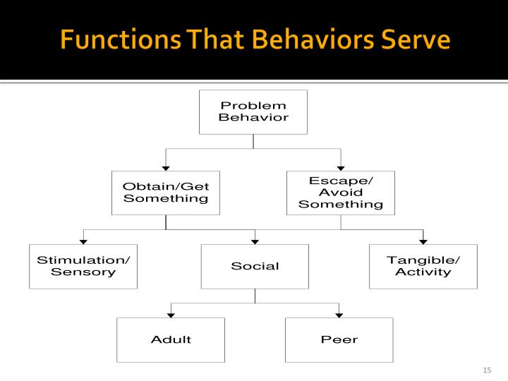 Functions That Behaviors Serve