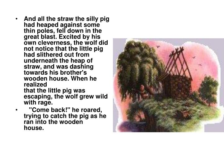 And all the straw the silly pig had heaped against some thin poles,