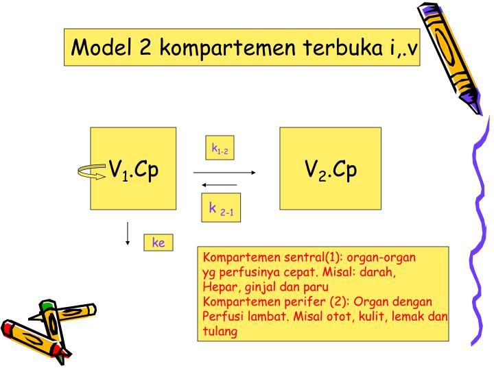 Model 2 kompartemen terbuka i,.v