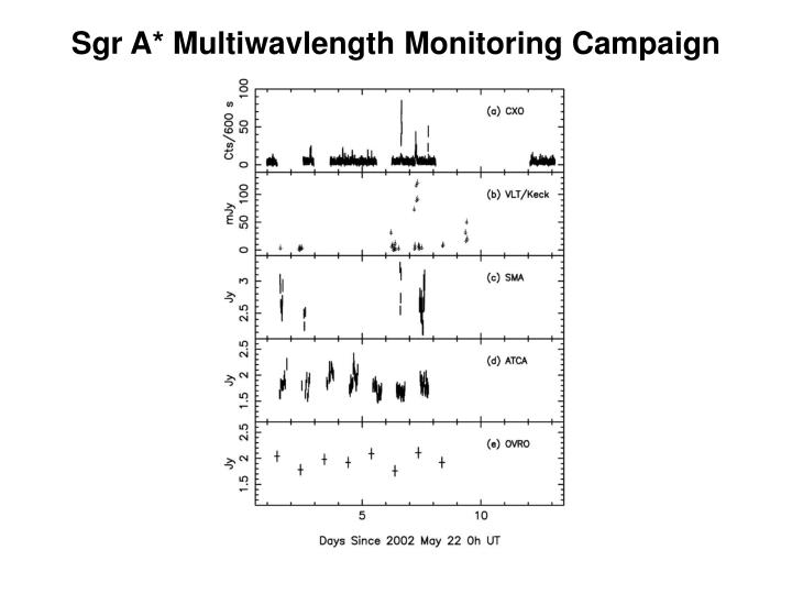 Sgr A* Multiwavlength Monitoring Campaign