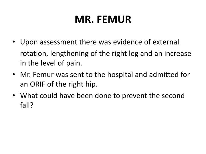 MR. FEMUR