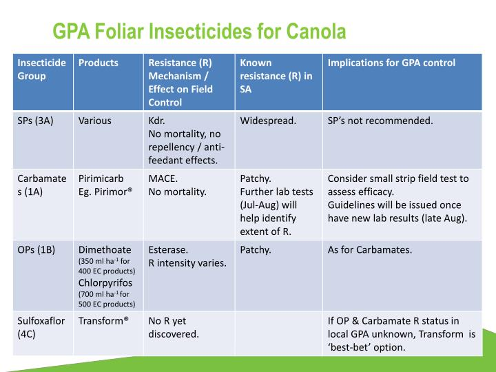 GPA Foliar Insecticides for Canola