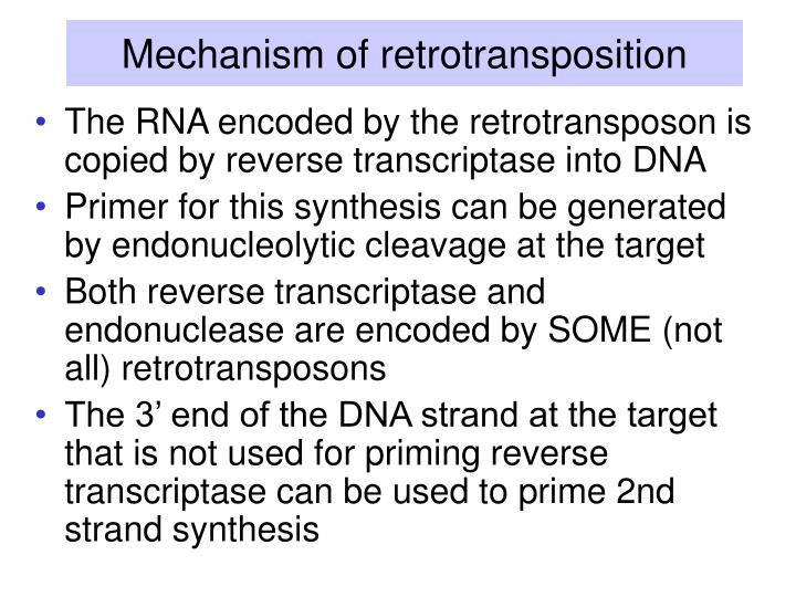 Mechanism of retrotransposition