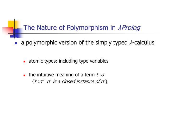 The Nature of Polymorphism in