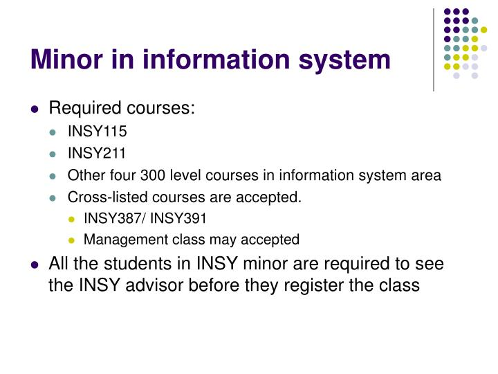 Minor in information system