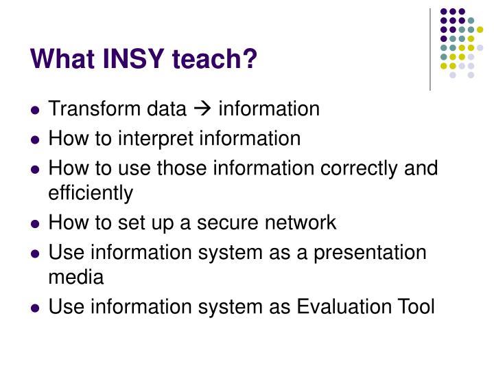 What INSY teach?