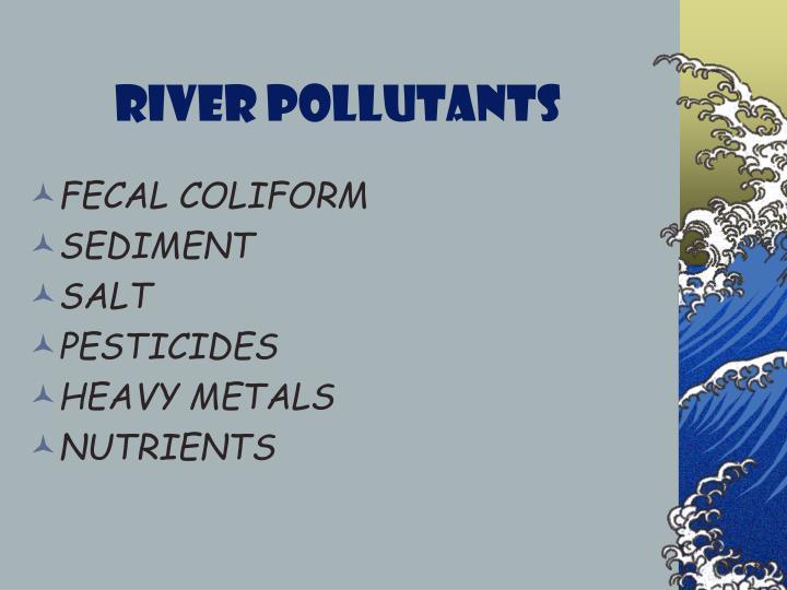 River Pollutants