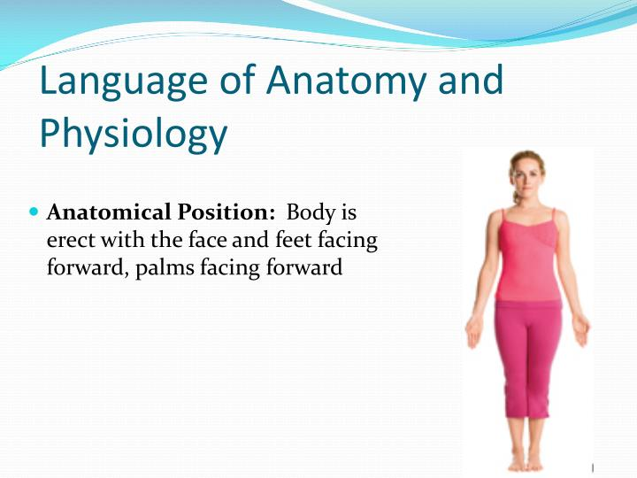 Language of Anatomy and Physiology