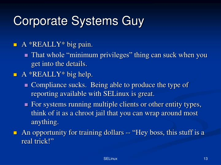 Corporate Systems Guy