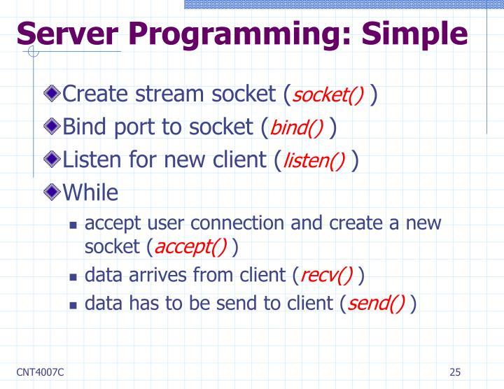 Server Programming: Simple