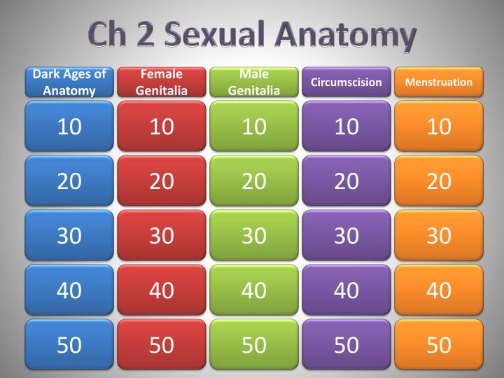 Ch 2 sexual anatomy