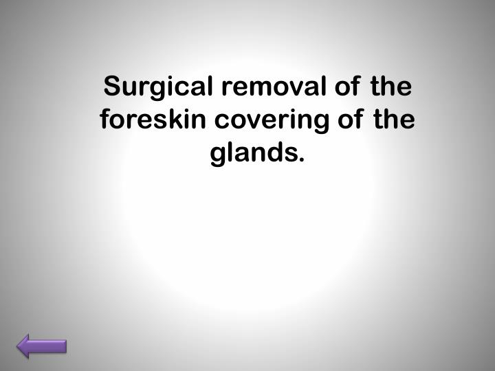 Surgical removal of the foreskin covering of the glands.