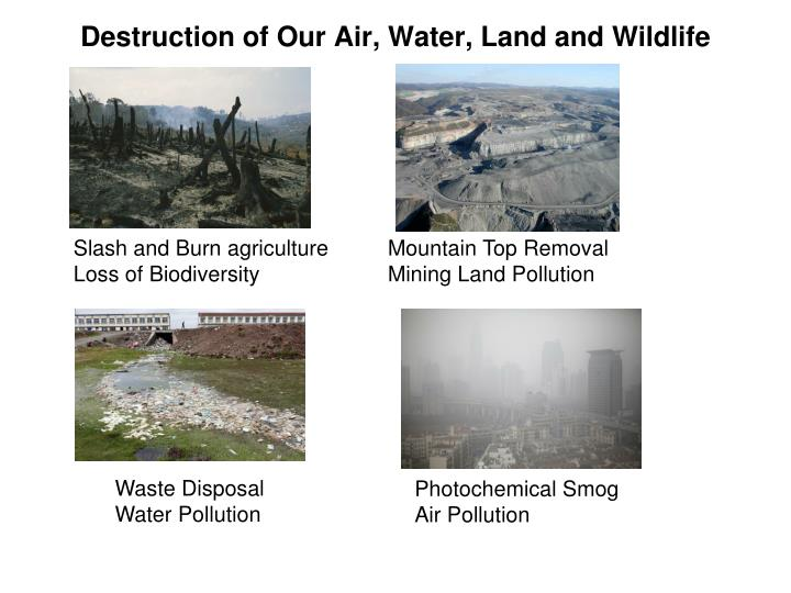 Destruction of Our Air, Water, Land and Wildlife