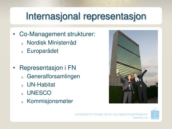 Internasjonal representasjon