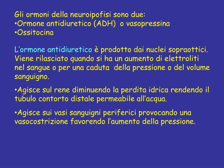 Gli ormoni della neuroipofisi sono due: